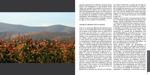 LIVRE-ZIND-HUMBRECHT-pages-26-27-vignette